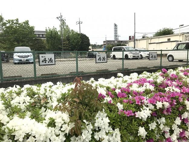 佐倉ラーメン丹治の駐車場